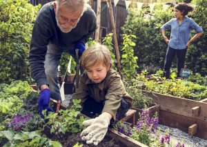 Criança plantando