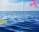 Oceano Azul: como preparar os jovens para enfrentar o mercado de trabalho