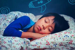 Sonecas ajudam na fixação de memórias